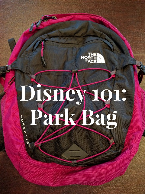 Packing the right Disney Park bag essentials makes for a smooth day at the theme parks. Find out exactly what to pack in your Disney Park Bag. #disneypacking #disneyparks #parkbag