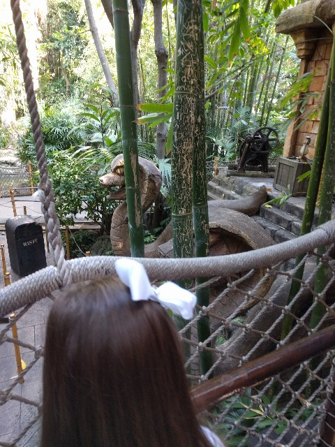 A snake waits for us in the Indiana Jones line