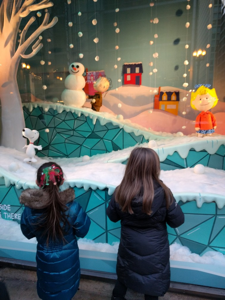 Looking for fun winter activities in Chicago? Here are our favorite things to do to celebrate Christmas in Chicago .