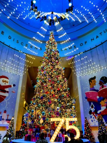 Are you visiting Chicago this Christmas and looking for festive winter activities? Here are our favorite things to do to celebrate Christmas in Chicago . #chicago #christmasinchicago