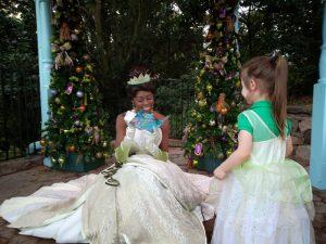 Twelve Days of Christmas - Disney Style meeting Tiana