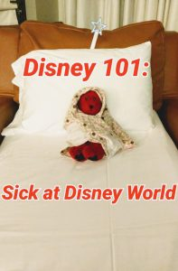 Being sick at Disney World is no fun. Knowing what to do just in case you do end up sick while at Disney World is some of the best advice I can give, but hope you never need.