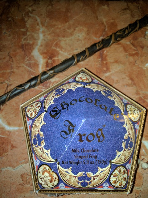 Are you a Harry Potter fan or a muggle learning about the Wizarding World of Harry Potter? Either way these tricks and tips for Harry Potter Orlando will make you look like a pro.