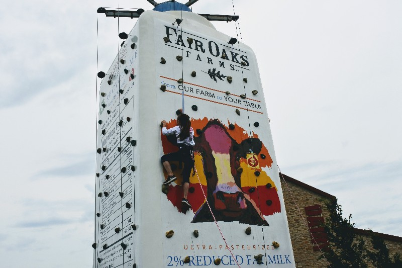Looking for something different near Chicago or Indianapolis? Take a 90 minute drive out to Fair Oaks Farms where you can learn all about a real working farm.
