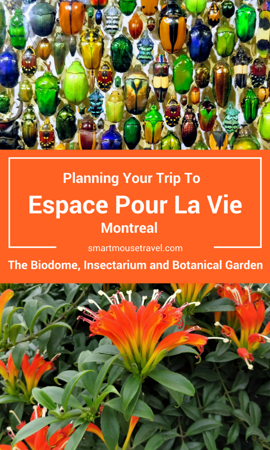 Espace Pour La Vie (Space For Life) is a must see when in Montreal! The Biodome, Insectarium, Botanical Garden, and Planetarium have something for everyone. Find out what to see and how to avoid common mistakes when visiting one of the best places in Montreal!