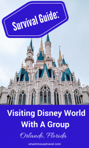 Visiting Disney World with a group can either provide wonderful memories or cause relationships to suffer. Use my tips and experiences in this survival guide to make your trip fun for everyone! #disneyworld #travel #disneyworldlargegroup