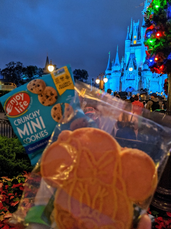 Are you struggling to decide if Mickey's Very Merry Christmas Party is worth the expense? Find out what to expect and when the extra cost makes sense. #disneyworld #disneychristmas #mickeysverymerrychristmasparty #magickingdom