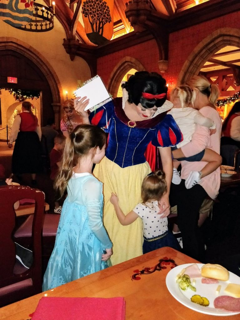 With over a dozen Disney World character meals it's hard to choose. We're reviewing all Disney World character dining to help you find the perfect one! #disneyworld #disneycharacters #charactermeal