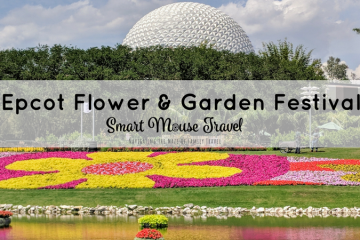 Epcot Flower and Garden Festival Activities range from outdoor kitchens to beautiful gardens and even a butterfly house. Find out our favorite things to do at Epcot Flower and Garden Festival. #epcot #disneyworld