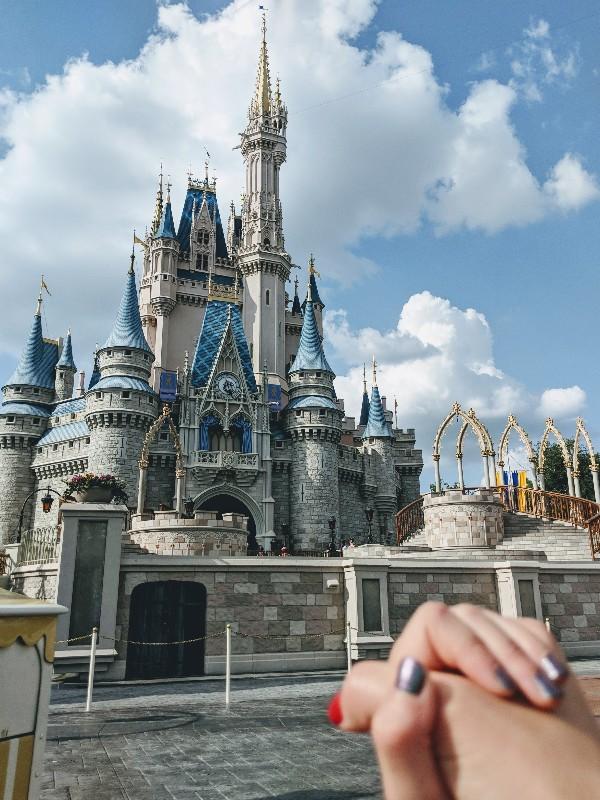 Should You Plan A Trip To Disneyland Or Disney World