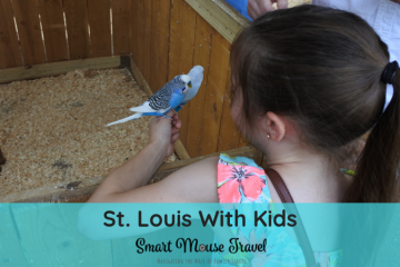 A family vacation to St. Louis can be a fun and inexpensive travel option. Here's a list of our favorite activities in St. Louis with kids. #stlouis #midwest #familytravel #travel #travelwithkids