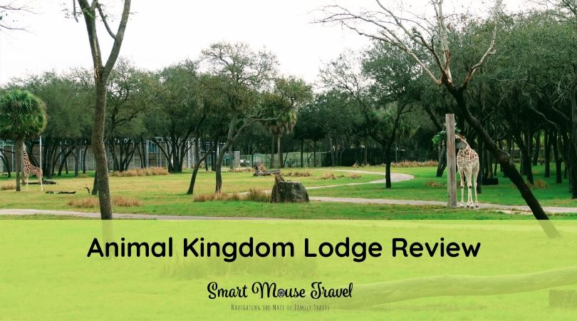 Animal Kingdom Lodge at Disney World has lots of unique offerings. Take a tour of a remodeled Animal Kingdom Lodge savanna view room and the resort, too. #animalkingdomlodge #disneyworld #disneyworldresorts #familytravel #disneytips