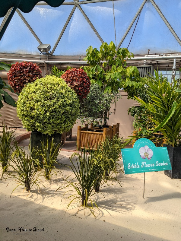 Living with the land Mickey topiary. Disney World Rider Swap also known as Rider Switch lets families with younger kids enjoy thrill rides without waiting in line twice!