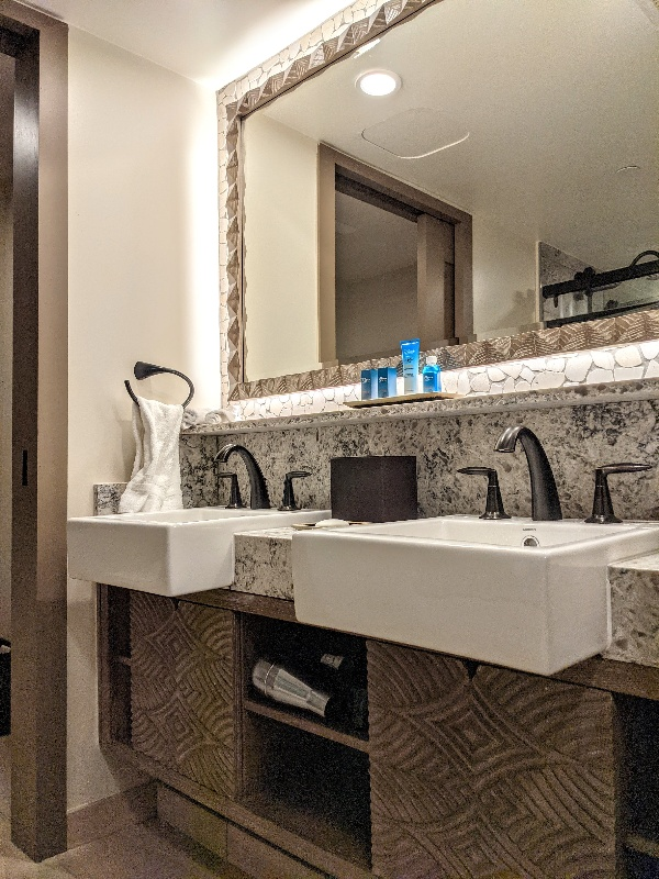 Double sinks with a mirror above and limited storage below.